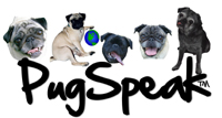 PugSpeak Pug Cards and Pug Gifts